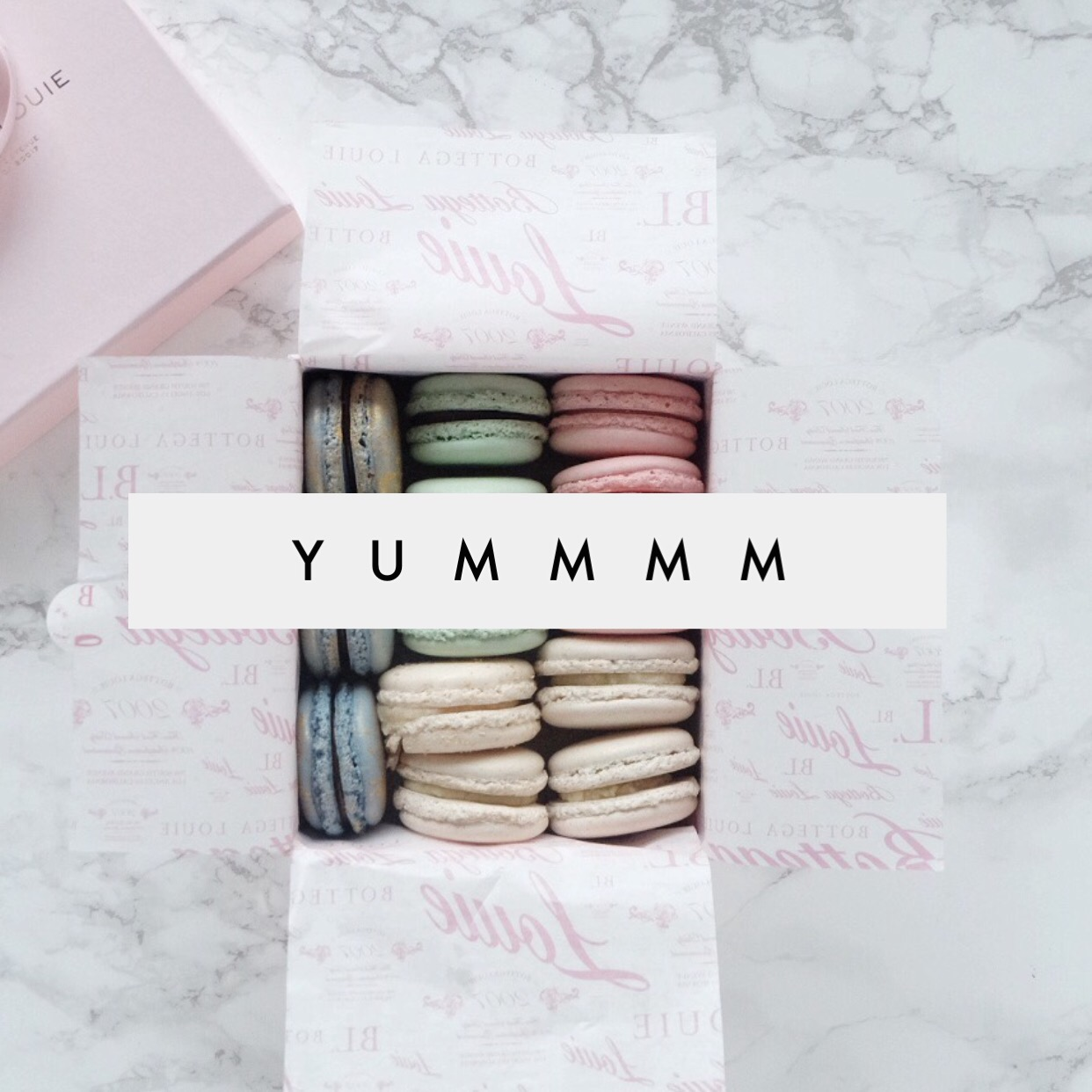 The little tiny hungry girl inside of me couldn\u0027t let this moment pass quietly into the night. I LOOOVE macaroons! They are just so simple a chic.